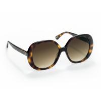 Sunglasses ONE Powerful Box Turtle OSBHS4551TCC321H